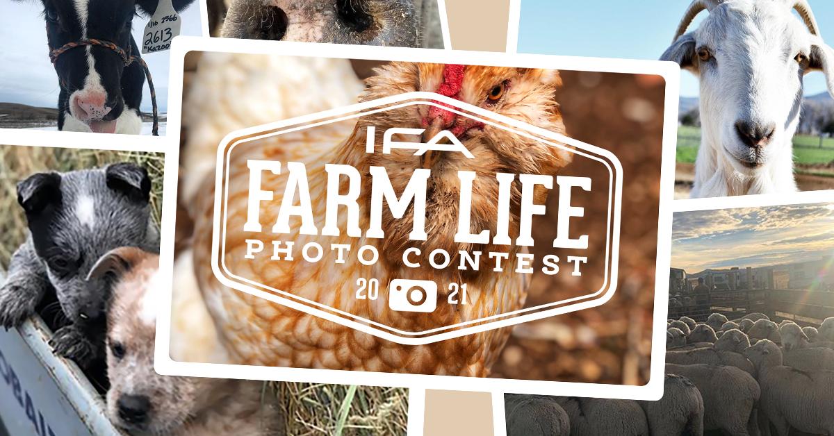 IFA_FarmLife_Contest21_web-image-main